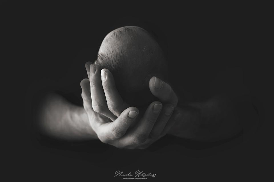 newborn-fotos-stuttgart-nicole-witschass